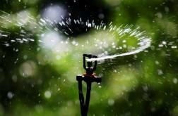buzzing-pump