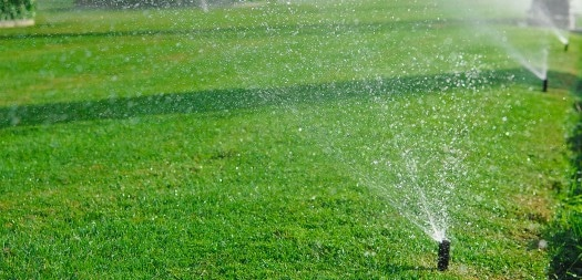 common-problems-with-sprinkler-systems
