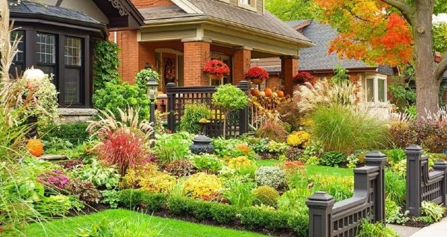 better-for-your-plants-and-other-landscaping